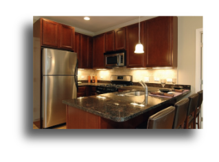 2 Bedroom Condo For Rent In Chicago Unit 318